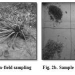 Fig. 2b. Sample preparation