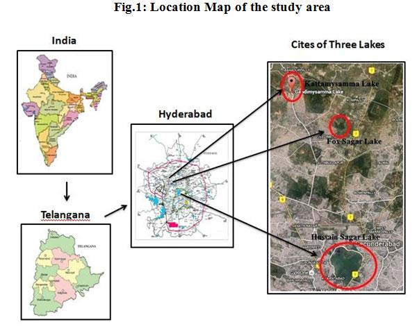 factors responsible for pollution of hussain sagar lake