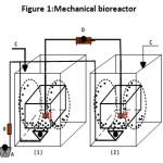 Figure 1:Mechanical bioreactor