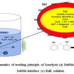 Figure 2: Schematics of working principle of Sonolysis (a) Bubble interior (b) Liquid-bubble interface (c) Bulk solution
