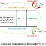 Figure 6: Schematic representation Photocatalysis of mechanism